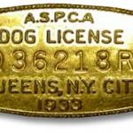 aspca33