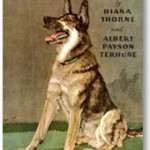 The Dog Book by Diana Thorne and Albert Payson Terhune.