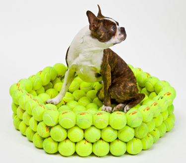 tennis-ball-bed