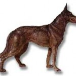 14-inch Hubley Cast Iron German Shepherd Dog door stop.