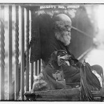 Beggars dog hoboken